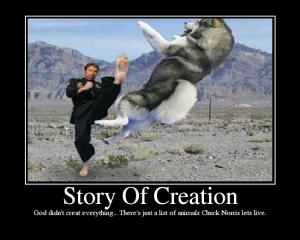 Chuck Norris StoryOfCreation
